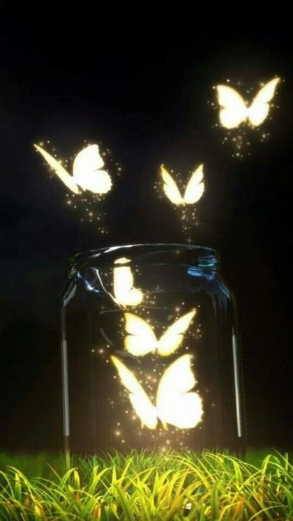lightflies